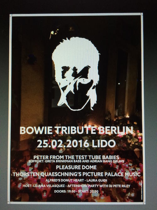 Bowie Tribute Berlin Show